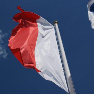 flaga polska pionowa